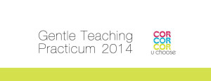 Gentle-Teaching-Practicum-20141