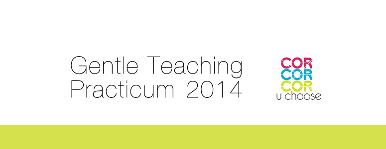 Gentle-Teaching-Practicum-20141